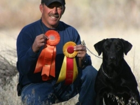 cade-akc-senior-hunter-title
