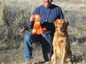 tucker-2-akc-junior-hunter-title