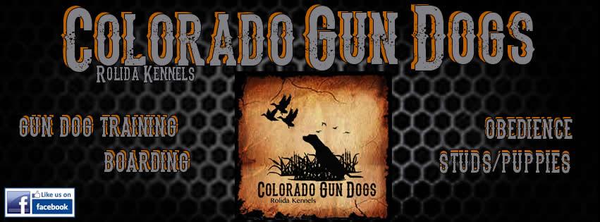colorado-gun-dogs-banner